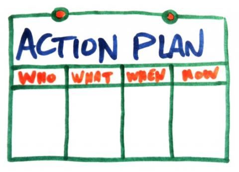 Action plan pic